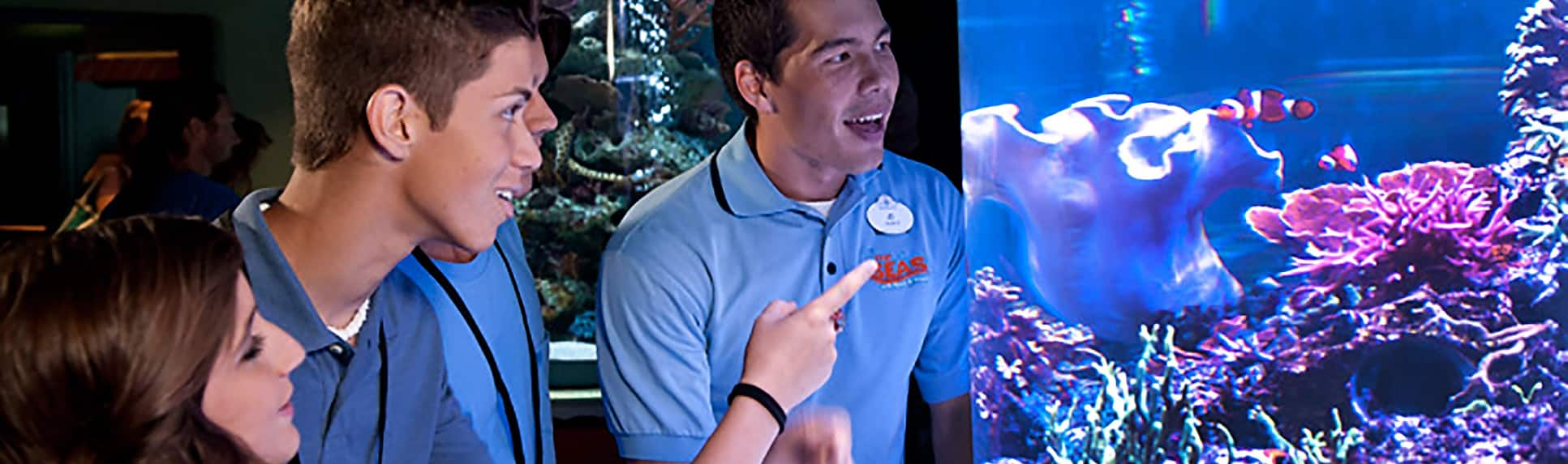 Young adults looking at a fish tank with a Cast Member