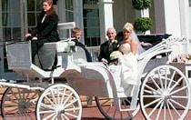 Horse Drawn Landau Coach