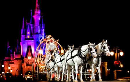 A coachman in Cinderella's Crystal Coach drives 6 horses outside Cinderella Castle at night